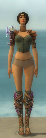 File:Ranger Drakescale Armor F gray chest feet front.jpg