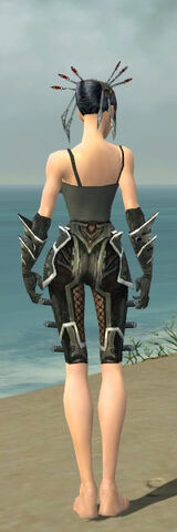 File:Necromancer Elite Kurzick Armor F gray arms legs back.jpg