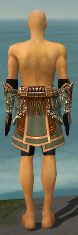 File:Ritualist Imperial Armor M gray arms legs back.jpg