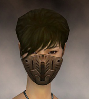 File:Assassin Elite Imperial Armor F dyed head front.jpg