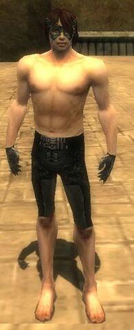 File:Mesmer Elite Sunspear Armor M gray arms legs front.jpg