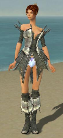 File:Elementalist Primeval Armor F gray chest feet front.jpg