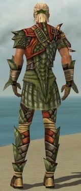 Ranger Elite Drakescale Armor M gray back