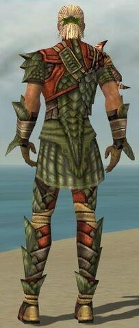 File:Ranger Elite Drakescale Armor M gray back.jpg