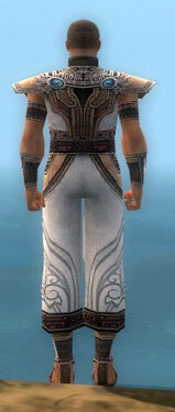 Monk Asuran Armor M dyed back