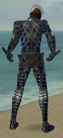 File:Necromancer Necrotic Armor M dyed back.jpg