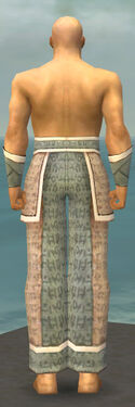 Monk Woven Armor M gray arms legs back