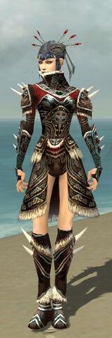 File:Necromancer Norn Armor F gray front.jpg