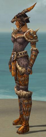 File:Warrior Charr Hide Armor F dyed side.jpg