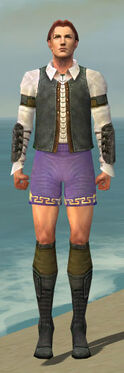 Mesmer Ascalon Armor M gray chest feet front