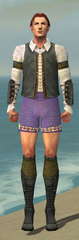 File:Mesmer Ascalon Armor M gray chest feet front.jpg