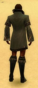 Mesmer Norn Armor M gray chest feet back