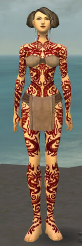 File:Monk Dragon Armor F dyed front.jpg