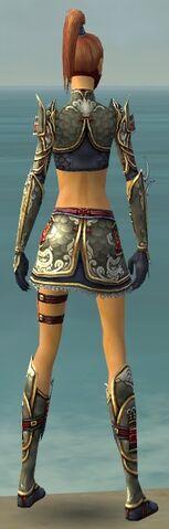 File:Assassin Monument Armor F gray back.jpg