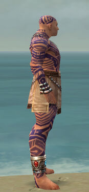 Monk Labyrinthine Armor M dyed side