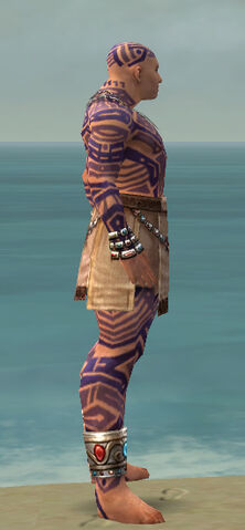 File:Monk Labyrinthine Armor M dyed side.jpg