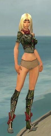 File:Ranger Elite Luxon Armor F gray chest feet front.jpg