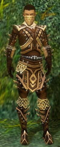 File:Ranger Elite Kurzick Armor M gray front.jpg