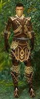 Ranger Elite Kurzick Armor M gray front