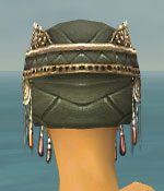 File:Ritualist Imperial Armor F gray head back.jpg