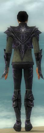 File:Elementalist Ascended Aeromancer's M gray back.jpg