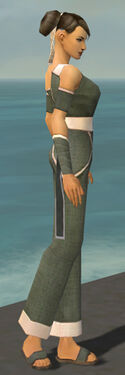 Monk Ascalon Armor F gray side