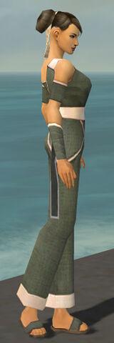 File:Monk Ascalon Armor F gray side.jpg