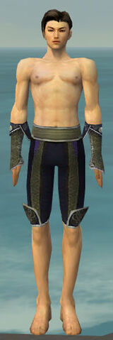 File:Elementalist Canthan Armor M gray arms legs front.jpg