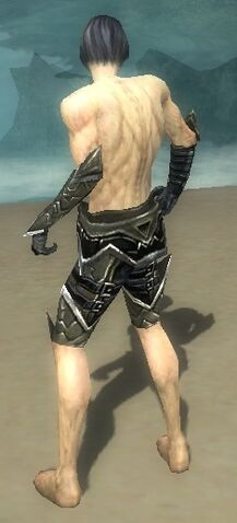 File:Necromancer Elite Profane Armor M gray arms legs back.jpg