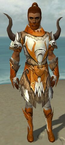 File:Paragon Norn Armor M dyed front.jpg
