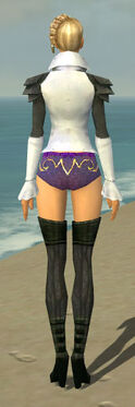Mesmer Ascalon Armor F gray chest feet back