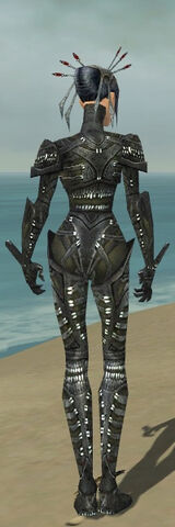 File:Necromancer Necrotic Armor F gray back.jpg