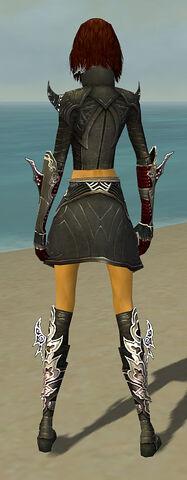 File:Assassin Deldrimor Armor F gray back.jpg