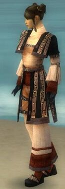 Monk Ancient Armor F dyed side