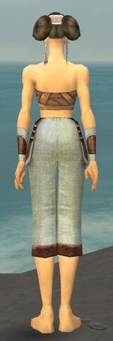 File:Monk Censor Armor F gray arms legs back.jpg
