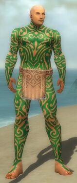 Monk Flowing Armor M dyed front