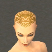 File:Monk Primeval Armor F dyed head front.jpg