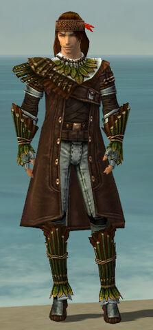 File:Ranger Druid Armor M gray front.jpg