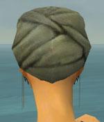 File:Ritualist Seitung Armor F gray head back.jpg