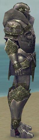 File:Warrior Platemail Armor M gray side alternate.jpg