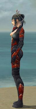 Necromancer Krytan Armor F dyed side