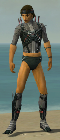 File:Assassin Elite Canthan Armor M gray chest feet front.jpg
