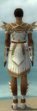File:Paragon Ancient Armor M dyed back.jpg