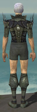 Necromancer Cabal Armor M gray chest feet back
