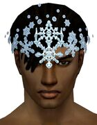 Snow Crystal Crest gray front