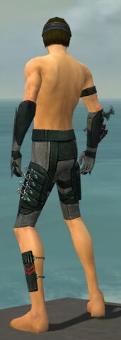 File:Assassin Seitung Armor M gray arms legs back.jpg