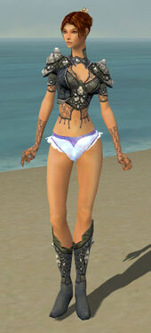 Elementalist Elite Stoneforged Armor F gray chest feet front