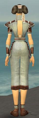 File:Monk Censor Armor F gray back.jpg