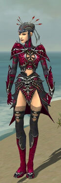 Necromancer Elite Necrotic Armor F dyed front
