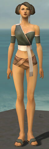 File:Monk Ascalon Armor F gray chest feet front.jpg